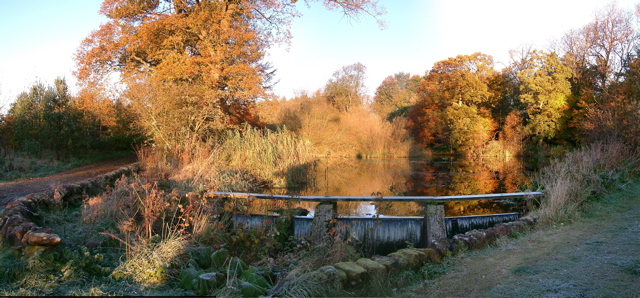 pond-autumn-08.jpg