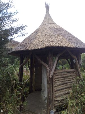 composting loo with thatched roof
