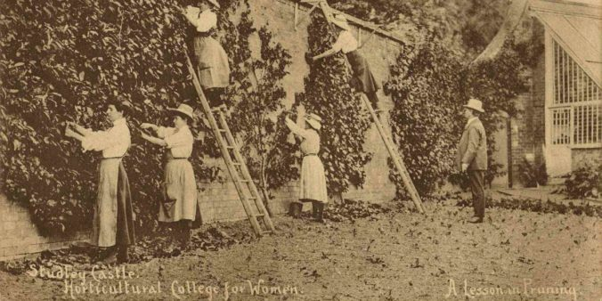 Sepia photograph of women gardeners training wall plants